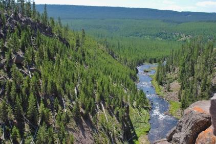 Gibbon River.